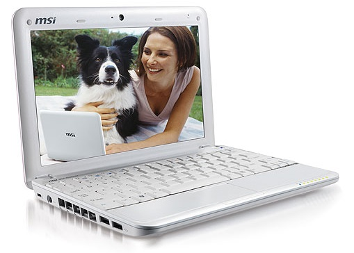Silver 10 Inch Laptop